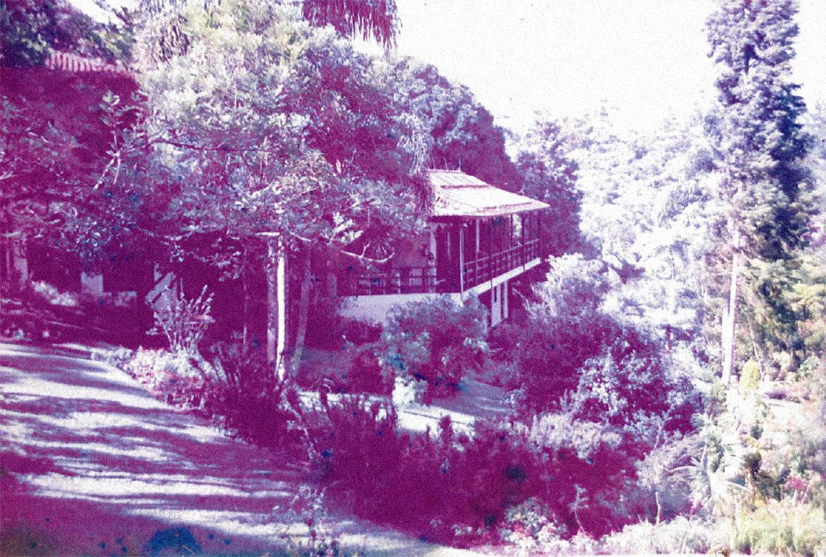 Artemisia Centro de Desenvolvimento Humano