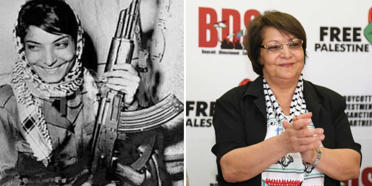Congressman Calls for Federal Investigation of San Francisco State  University for Hosting Convicted Terrorist Leila Khaled — Stop Antisemitism