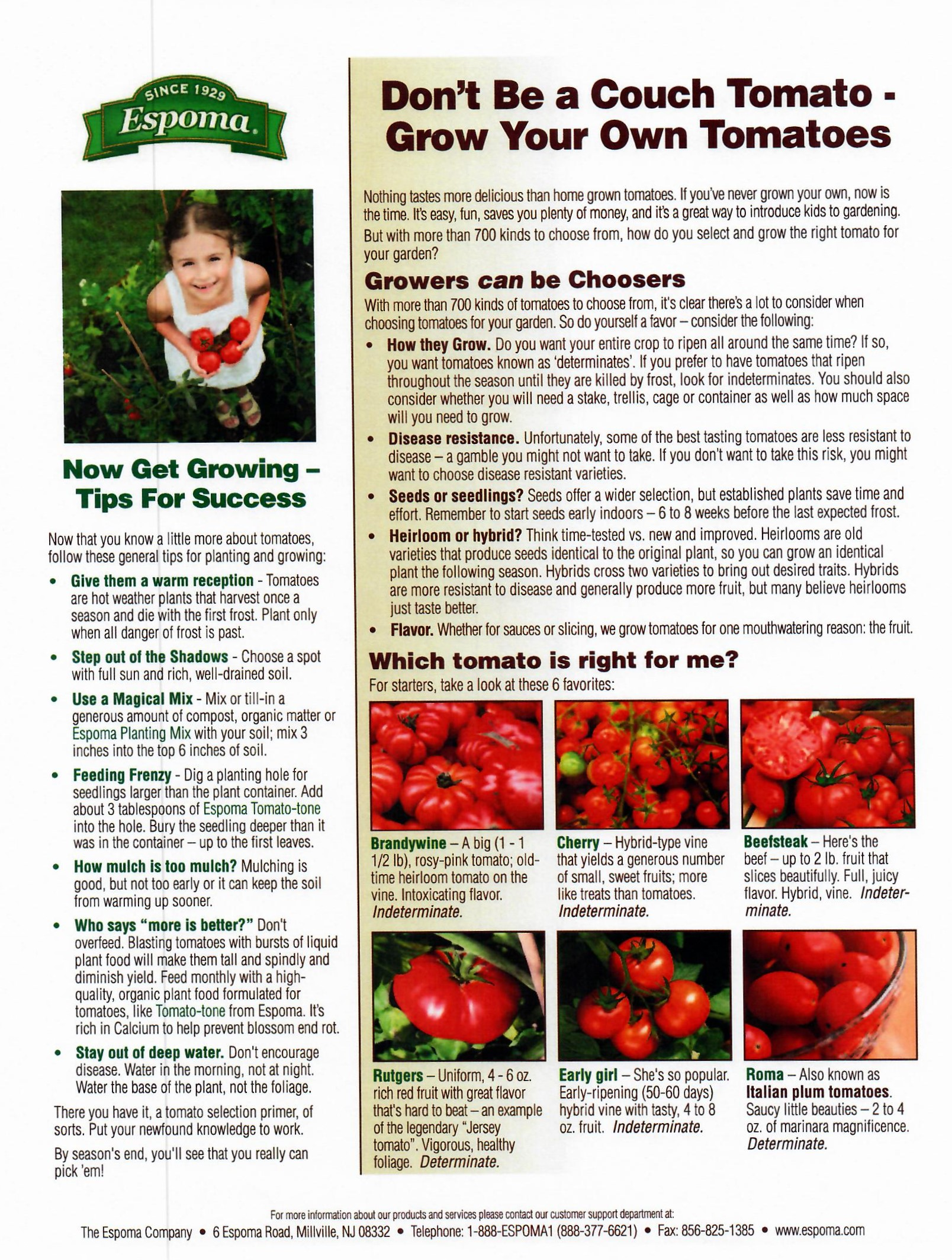 grow your own tomatoes.jpg