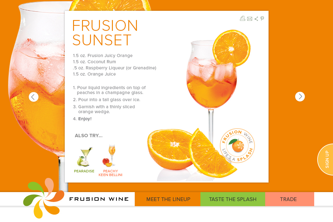 Frusion-6.jpg