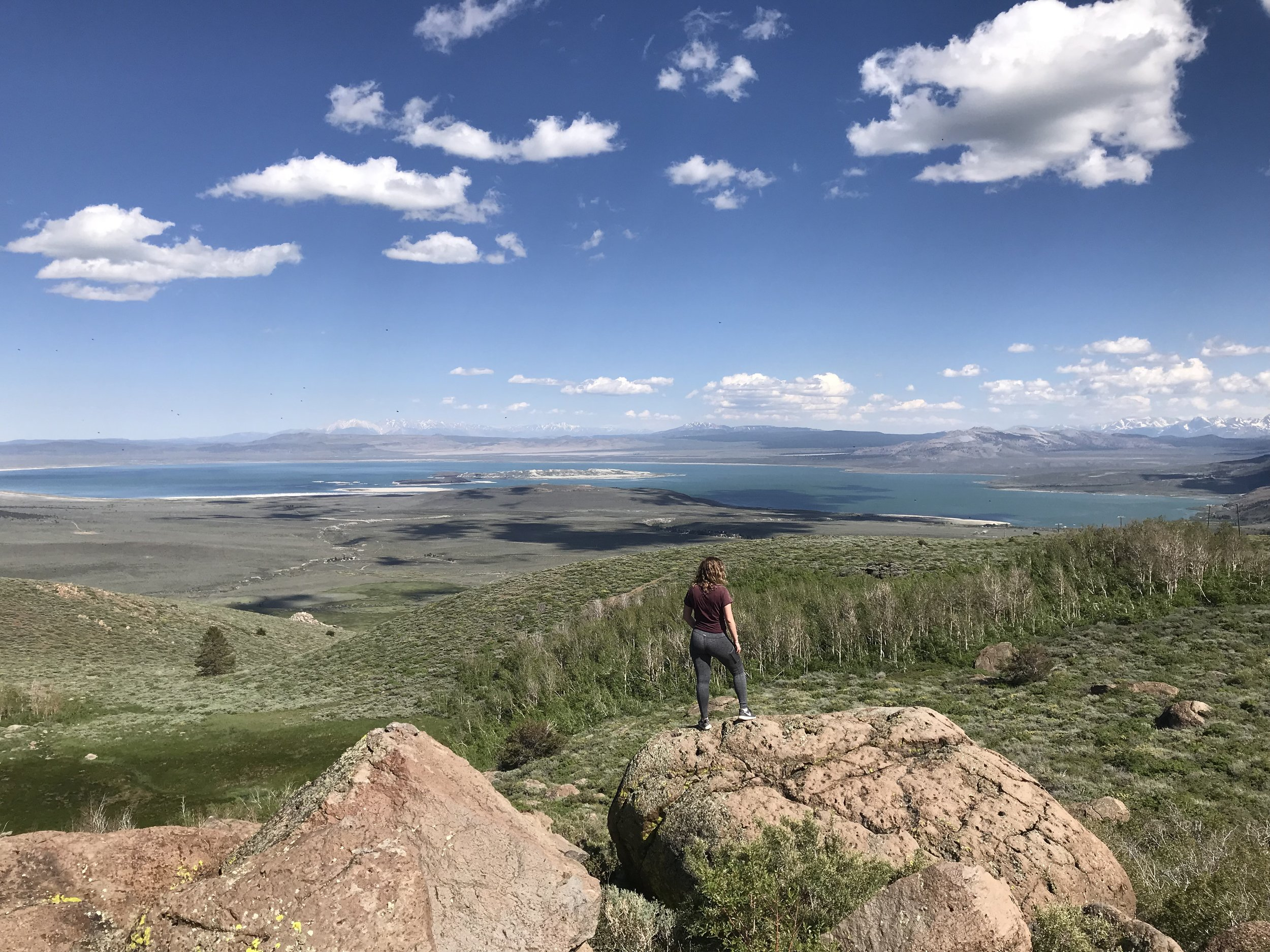 MONO LAKE VIEW FROM ABOVE