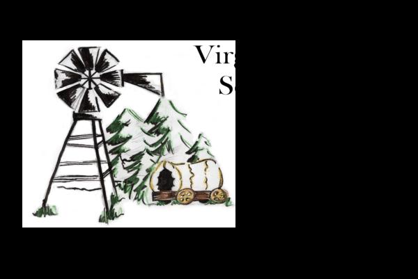 VCS.png
