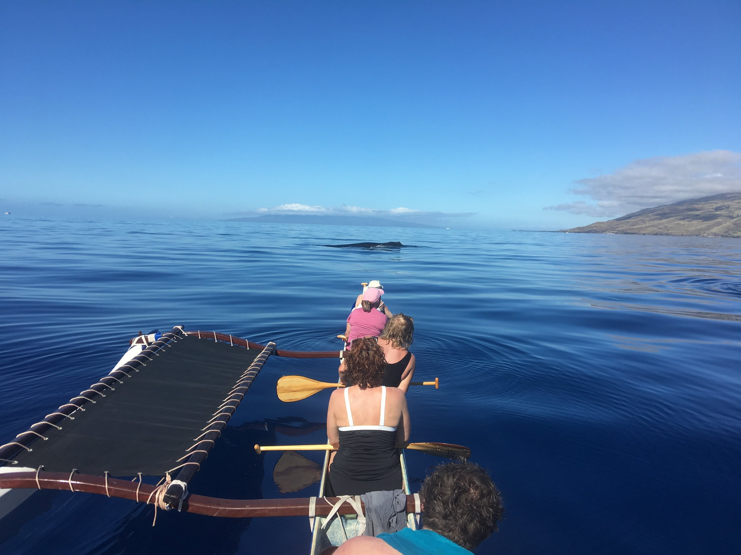 Blue_Soul_Maui_Outrigger_Canoe_Whale_Watch_5.jpg