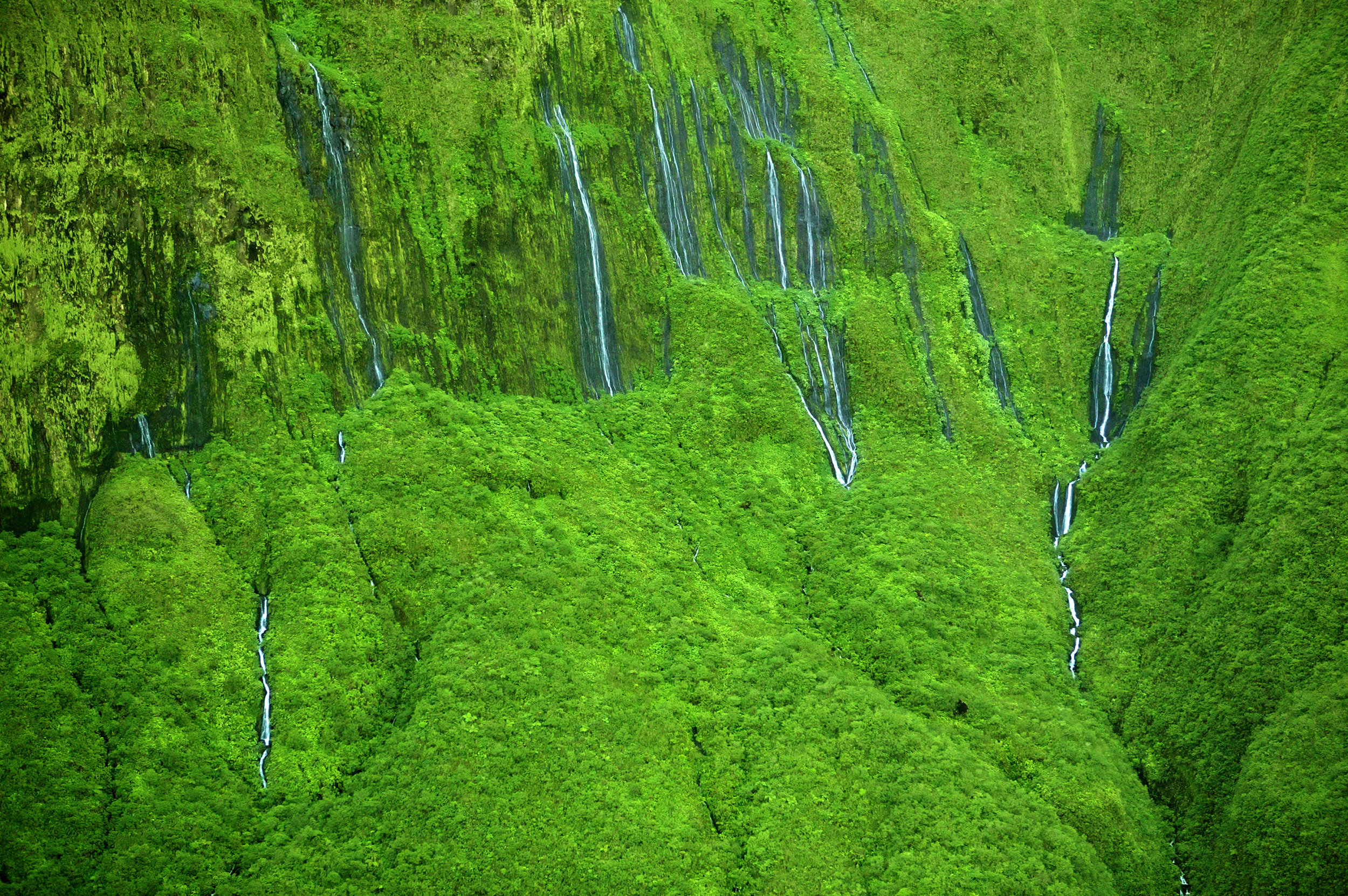 Blue_Soul_Maui_Private_Tour_Hana_Waterfall_6.jpg