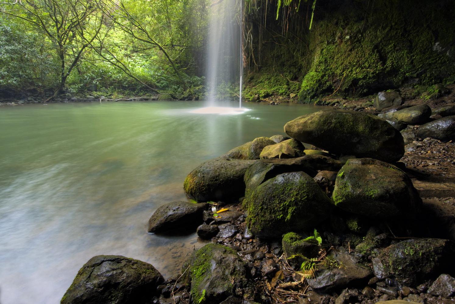 Blue_Soul_Maui_Private_Tour_Hana_Waterfall_20.jpg