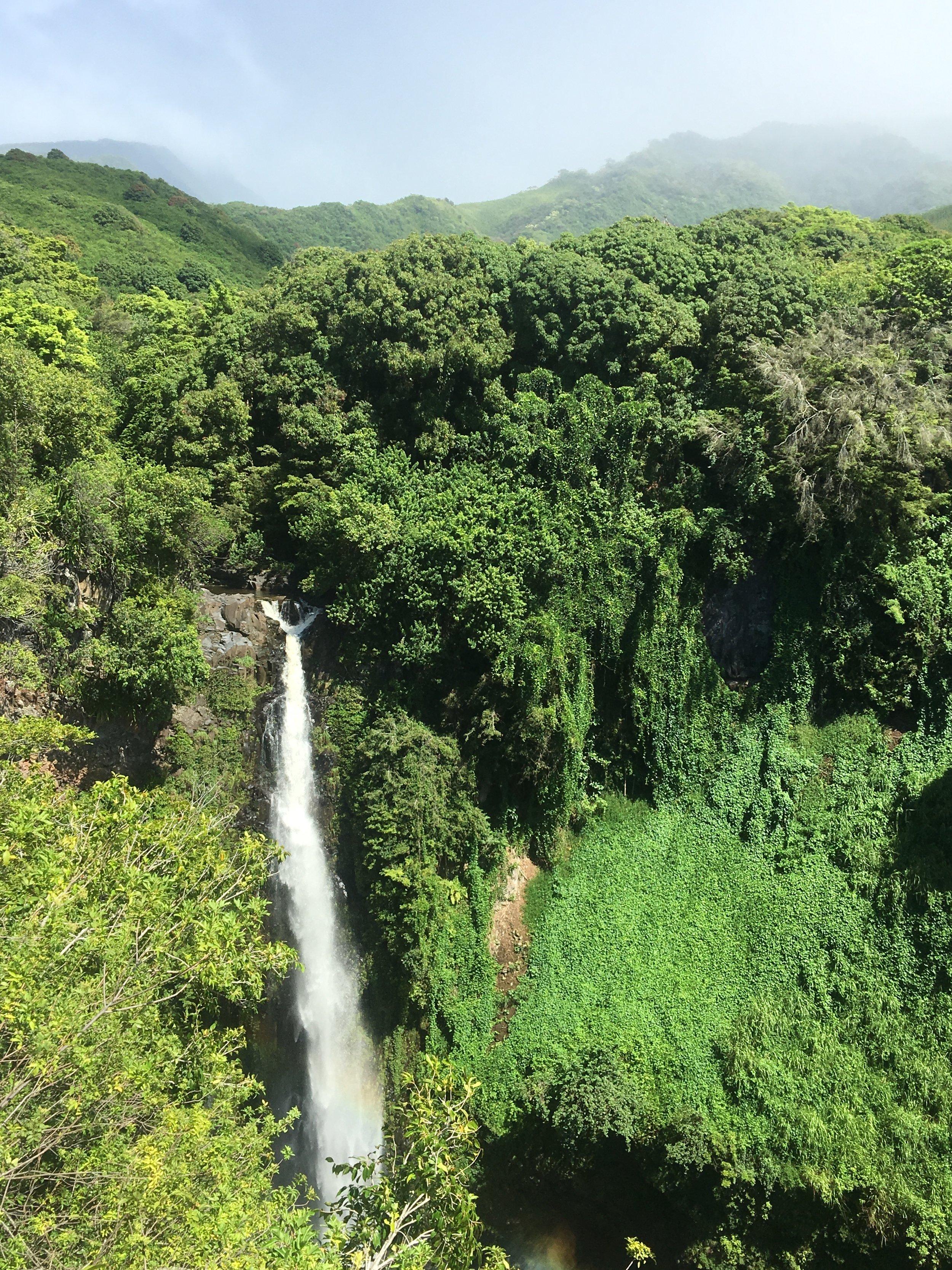 Blue_Soul_Maui_Private_Tour_Hana_Waterfall_13.jpg
