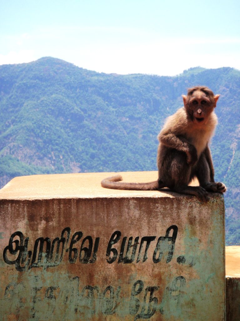 Residents of Kadaikonal -