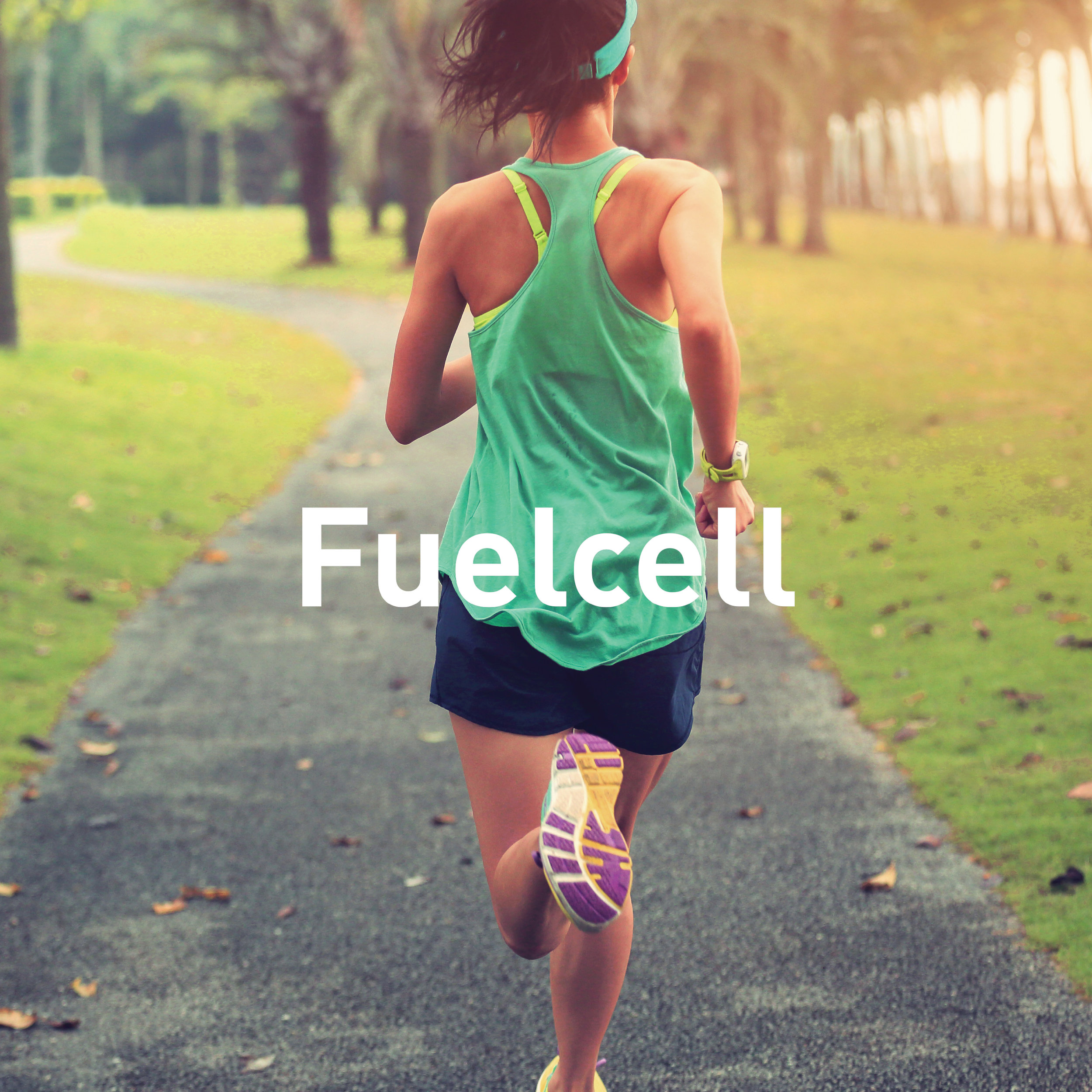 FuelCell (New Balance)