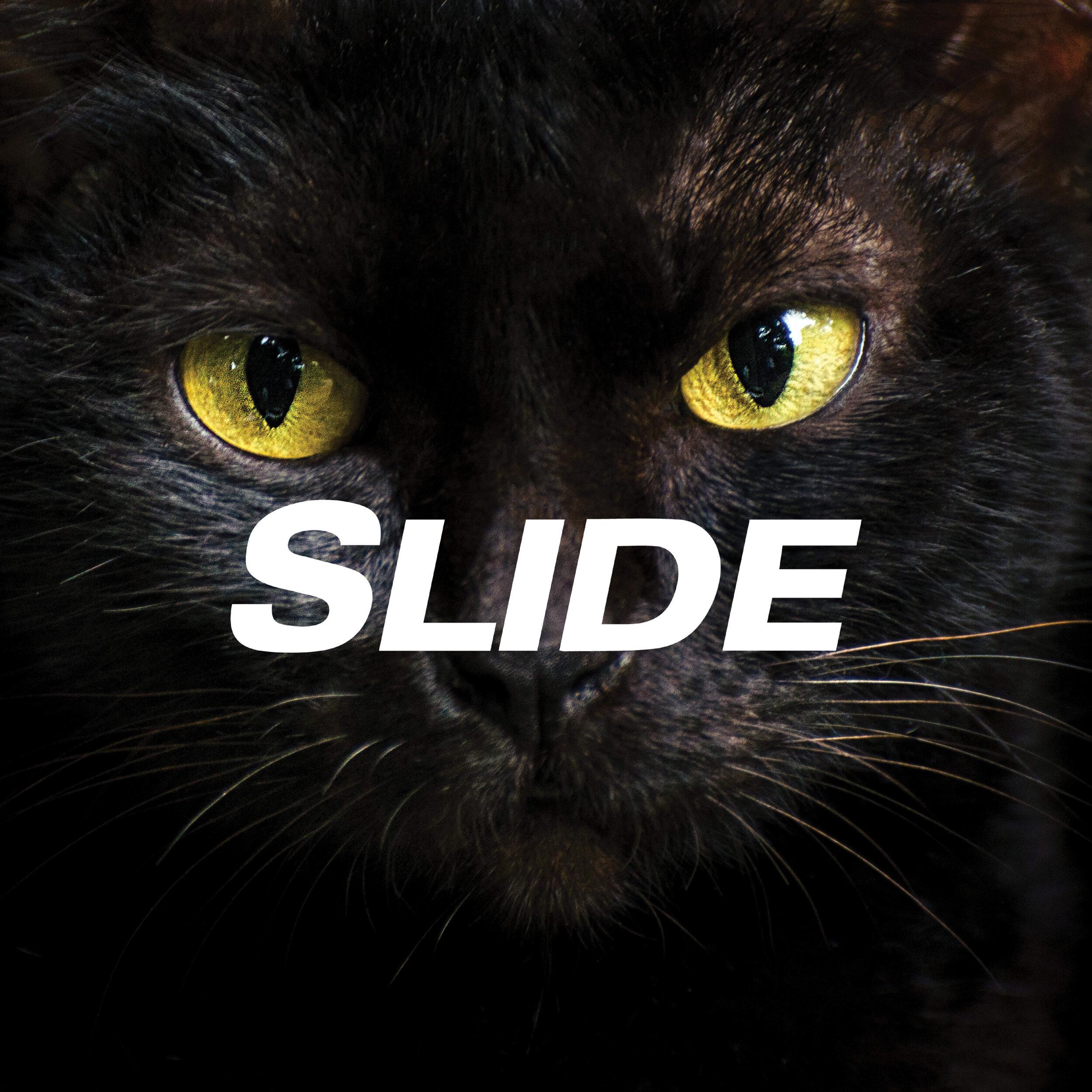 Slide_Arm & Hammer_credential.jpg