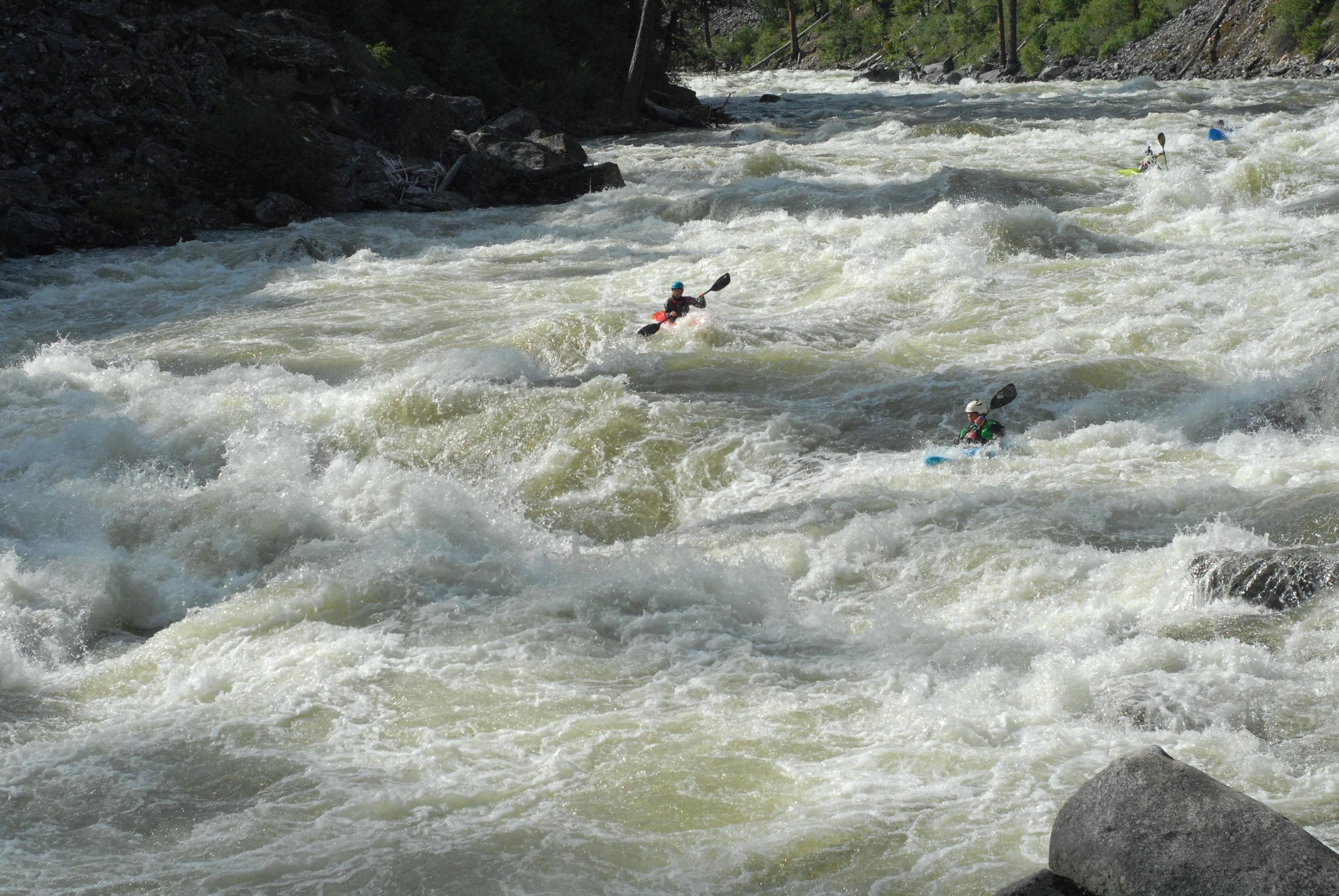 whitewater of the South Fork Salmon river idaho kayaking .JPG