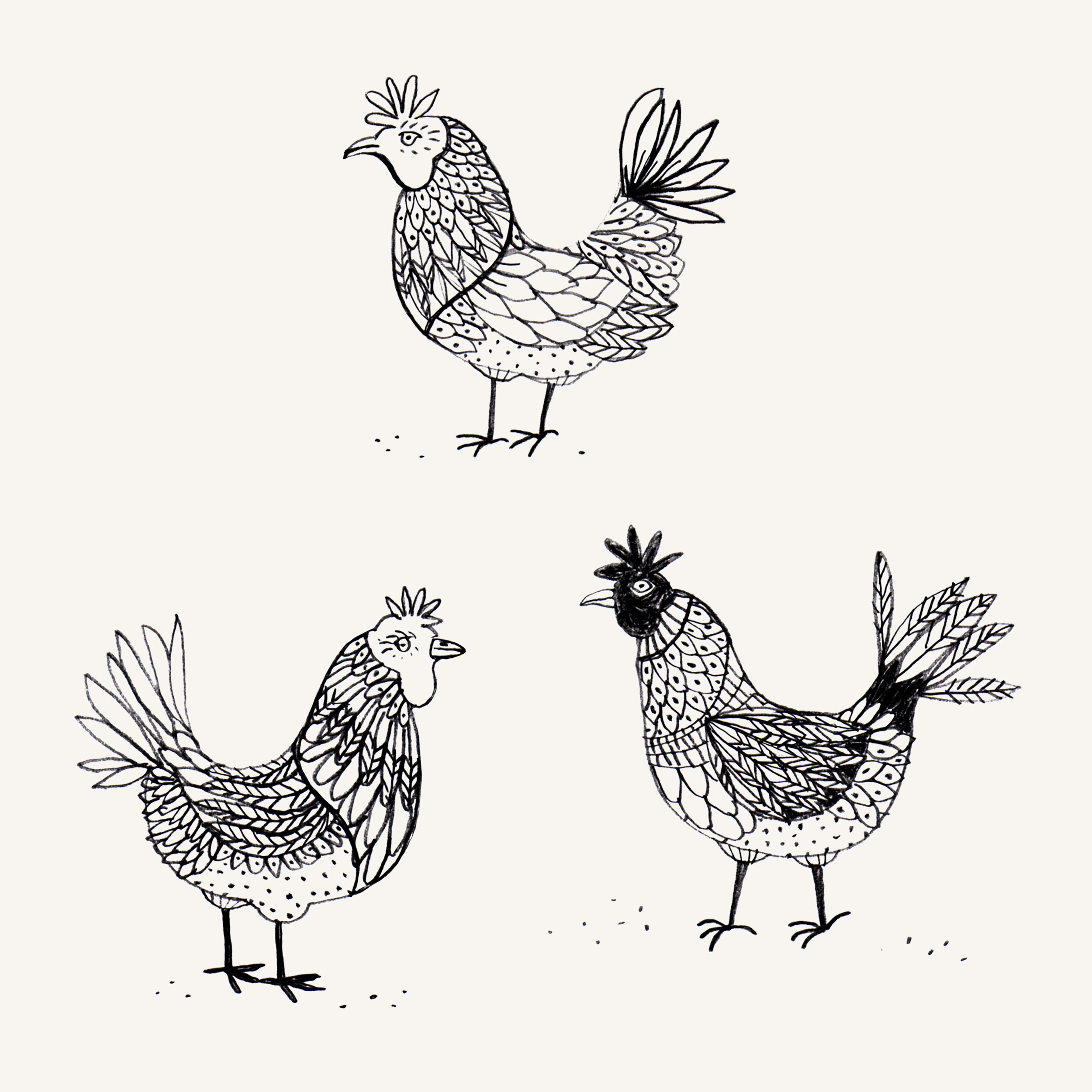 Black-white-pencil-chicken-drawing.jpg