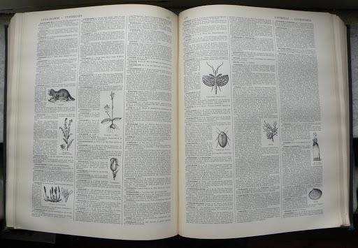 Le Nouveau Dictionnaire Larousse Volume 2 pages 476-477, 1899.
