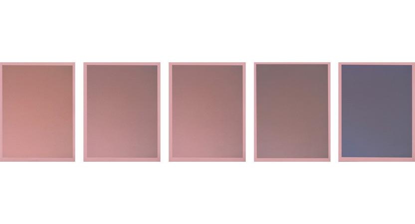Colour on Colour Pink, 2010