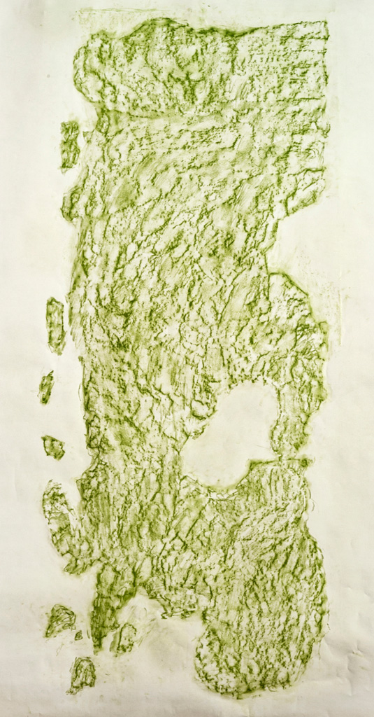 Possible Impressions, 2014  Green conte frottage, 215 x 90 cm