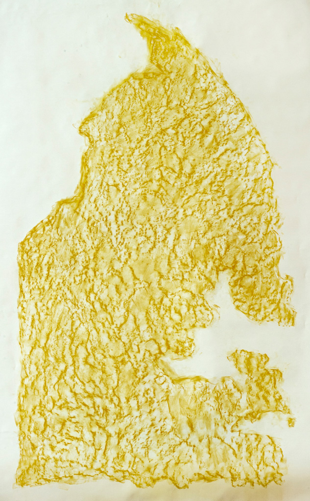 Possible Impressions, 2014  Yellow conte frottage, 130 x 180 cm