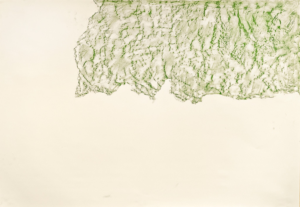 Possible Impressions, 2014 Green conte frottage, 80 x 50 cm