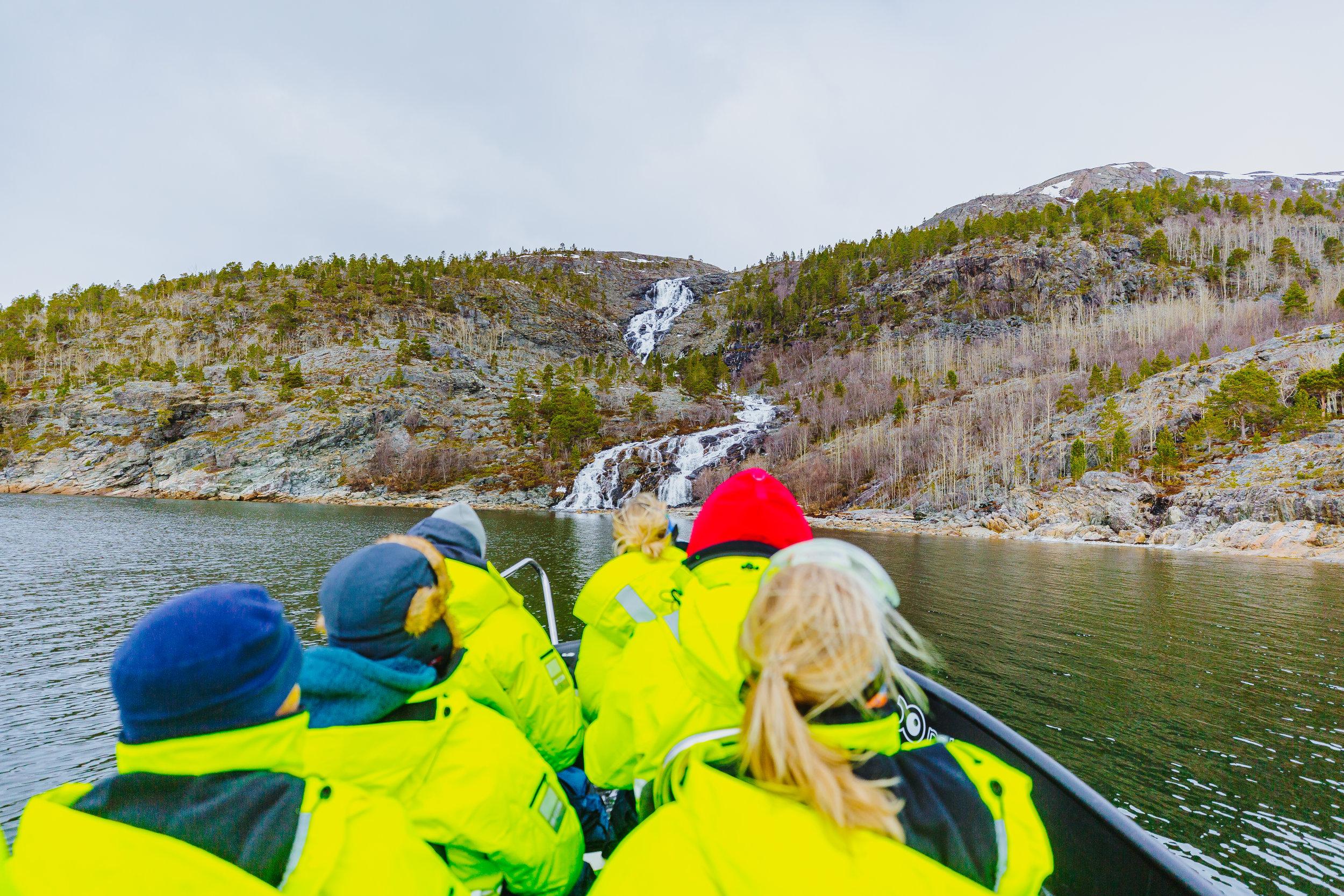 Fjord safari by RIB