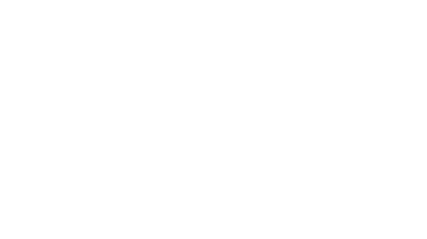 BlackPointManor_logo_R copy.png