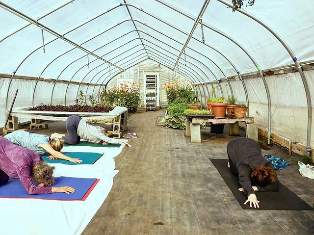 We grounded and heliotroped just like plants in today's #restorativeyoga class with @vic_toritori_a ! We can't wait for next week's class here as well ☀️🌞☀️🌞☀️🌞🌱☀️🌞☀️🌞❤️☀️🌞☀️❤️
