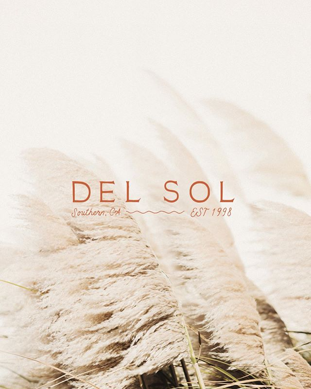 Del Sol is an ode to the sunny landscape of the Southwest. It's a brand with lively spirit and a hunger for celebration - balanced by the thoughtful presentation of a strong, cohesive look.  Shop Del Sol and other semi-custom brands at www.thesuiteshop.co (link in bio!) 🍬  #thesuiteshop #photobug #photobugcommunity #branding #handlettering #custombrand #handmadebrand #creativepreneur #southwesternbrand #southwestdesign