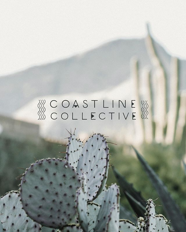 Coastline Collective is a minimalist's take on a more bohemian style. Sandy shores and good vibes are the primary inspirations for this classic, clean and multi-functional branding suite.  Shop Coastline Collective and other semi-custom brands at www.thesuiteshop.co (link in bio!) 🍬  #thesuiteshop #branding #handlettering #custombrand #handmadebrand #creativepreneur #bohobrand #collectivebranding #photobug #photobugcommunity