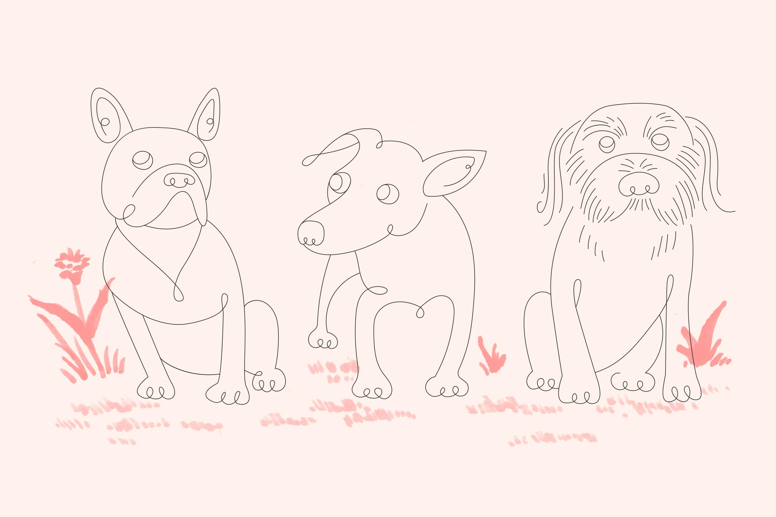 pup-squad.jpg