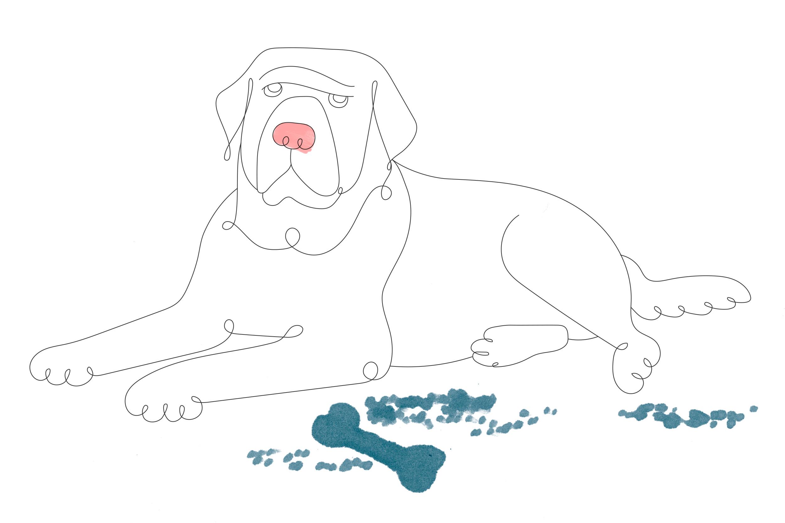big-pup.jpg
