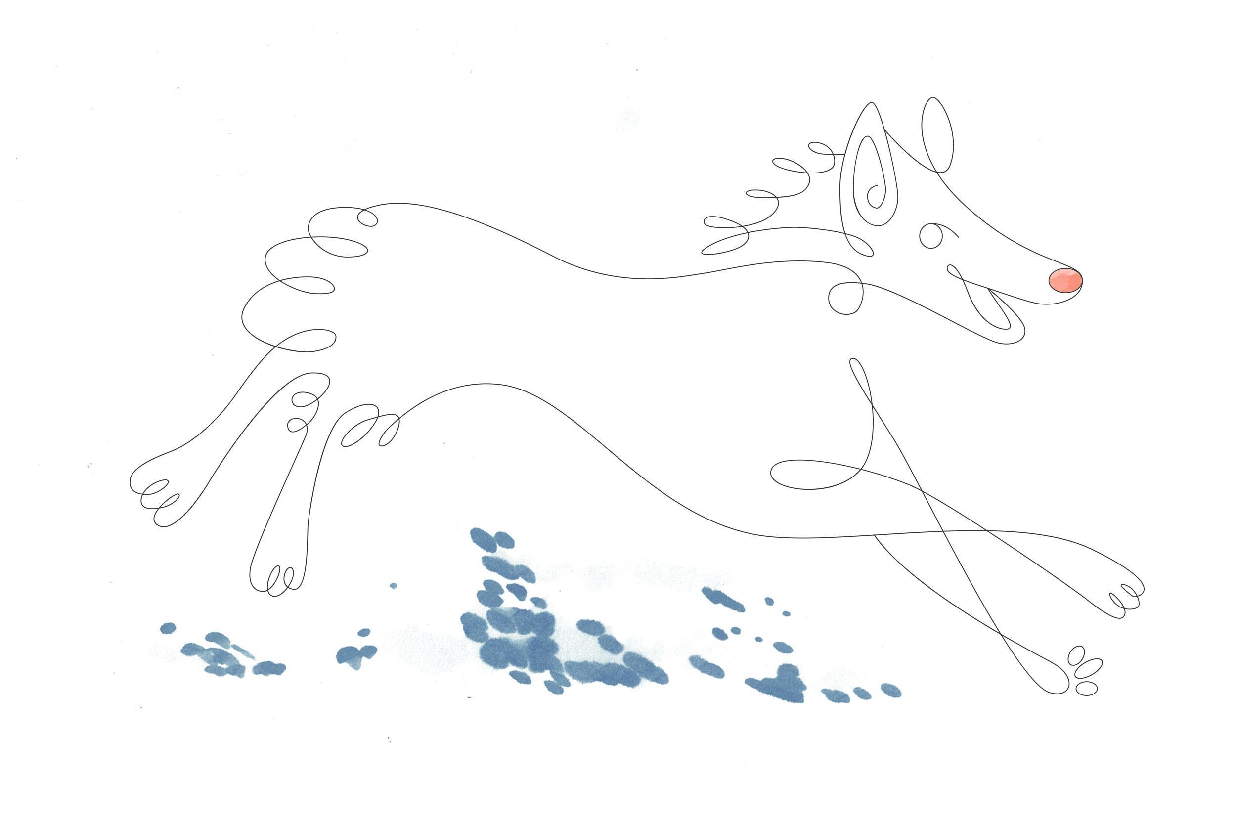 big-pup-2.jpg