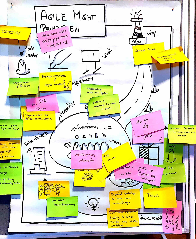 Agile Mgmt Prinzipien_web.jpg