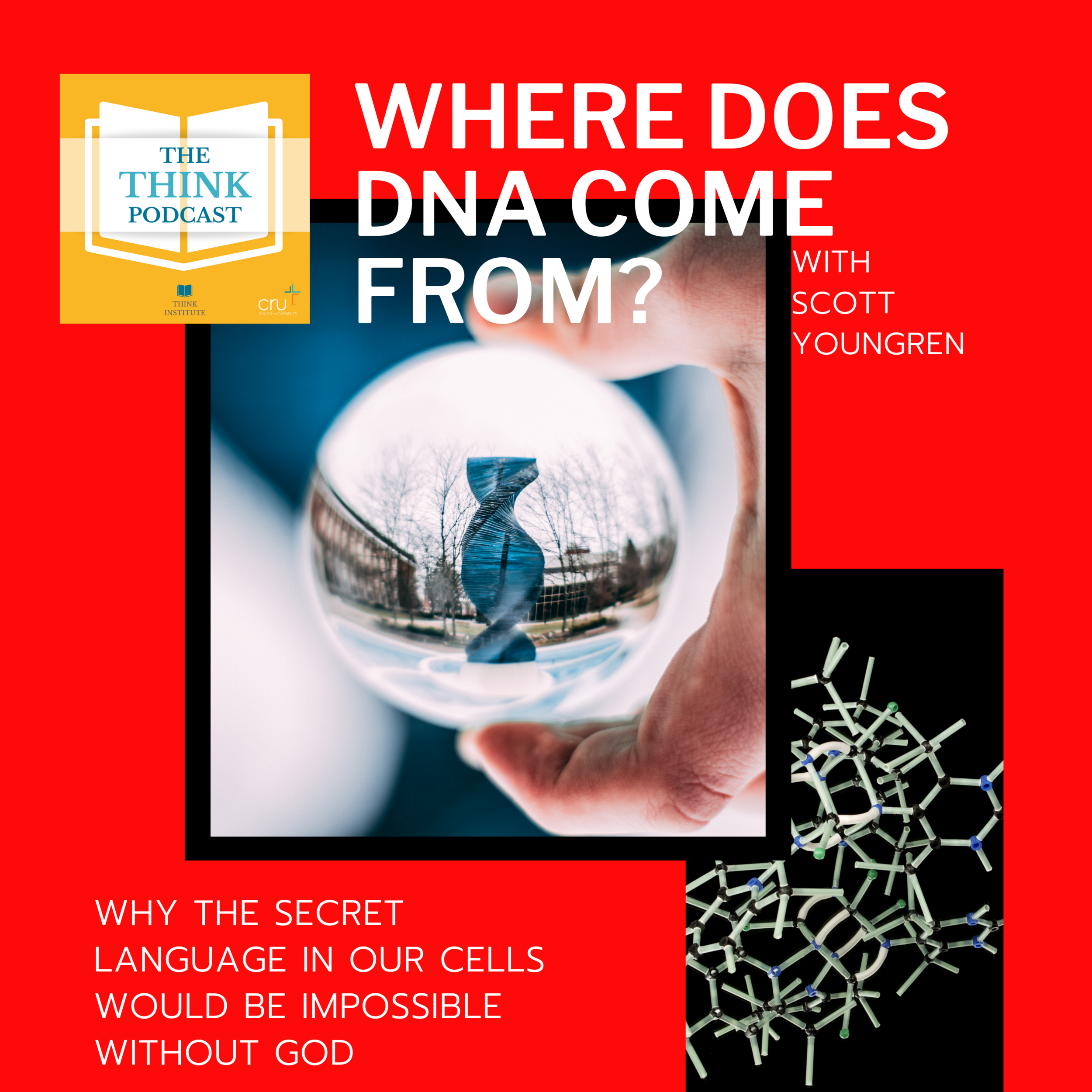 Where does DNA come from?
