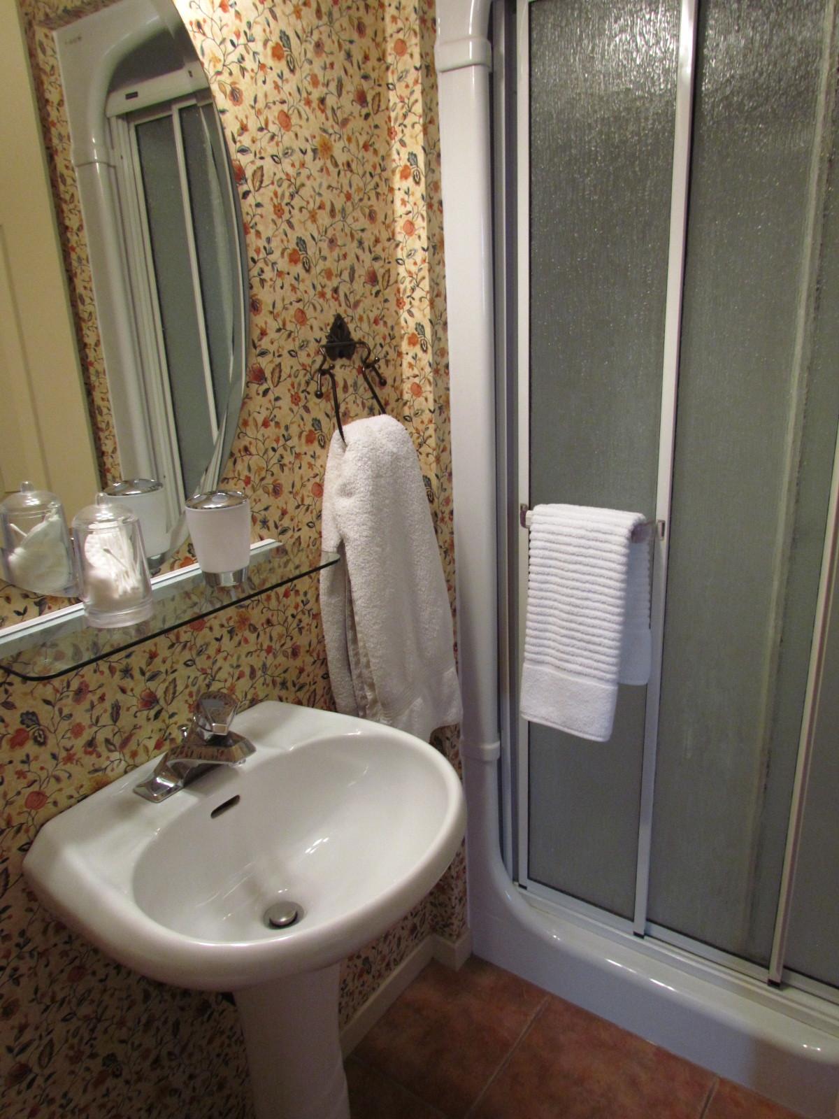 bathroom sink shower mirror bnb b&b
