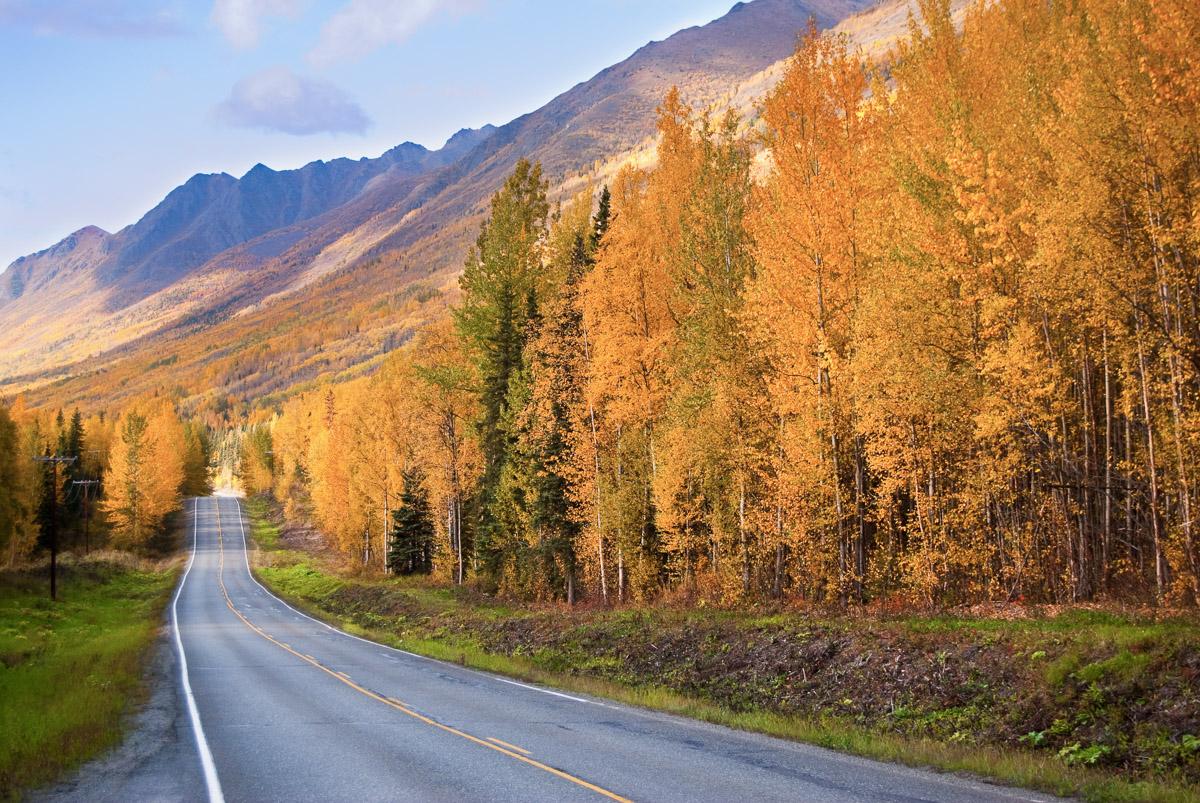 travel-road-alaska-1.jpg
