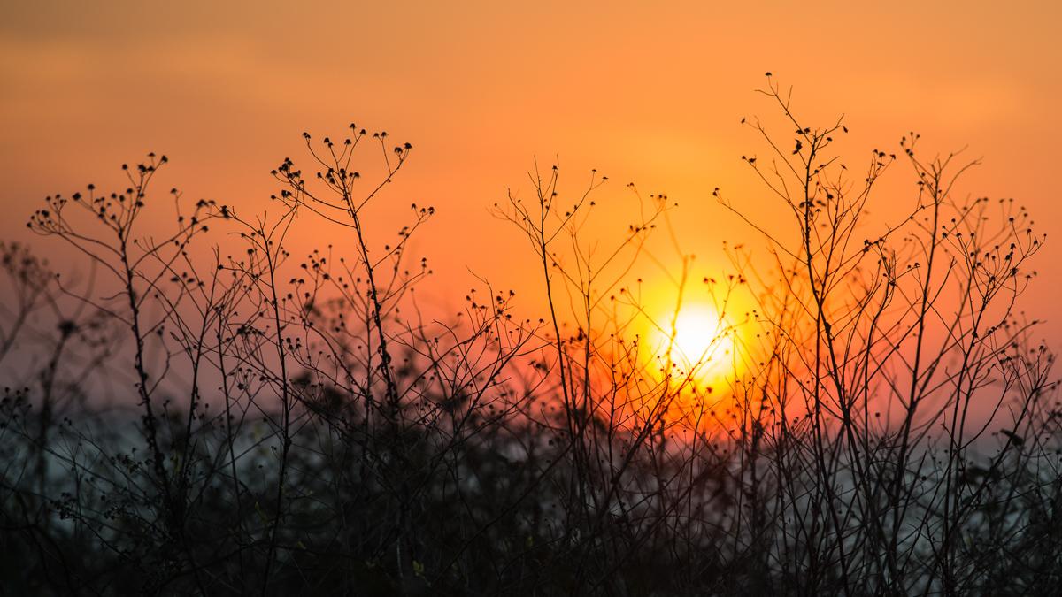 nature-landscape-travel-sunset-1.jpg