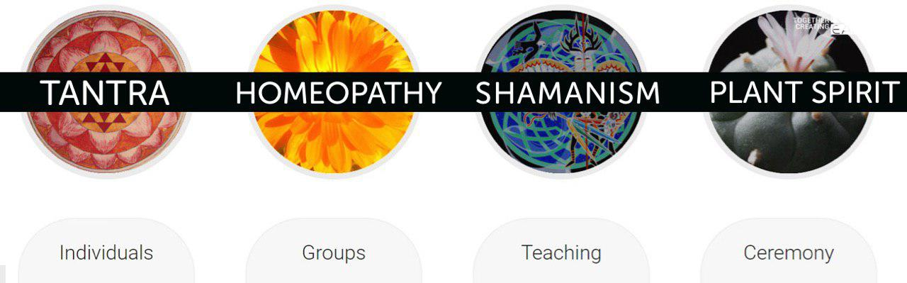 plant-spirit-tantra-homeopathy-plant-medicine-shamanism-groups-individuals-soul-medicine-declan-hammond-louise-dublin-business-wellness-ireland-health-wellbeing-healers-journey-ireland.jpg