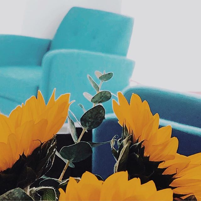 Finding time to focus. What makes you feel inspired ? Lately I've been finding #inspiration in #sunflowers 🌻 I just admire how sunflower are bright and confident. They brighten up any room! I really like how all flowers can make a space feel happier! 💐💕 #femaleentrepreneur #entrepreneurialmindset #entrepreneurmotivation #successmindset #ipreview via @preview.app