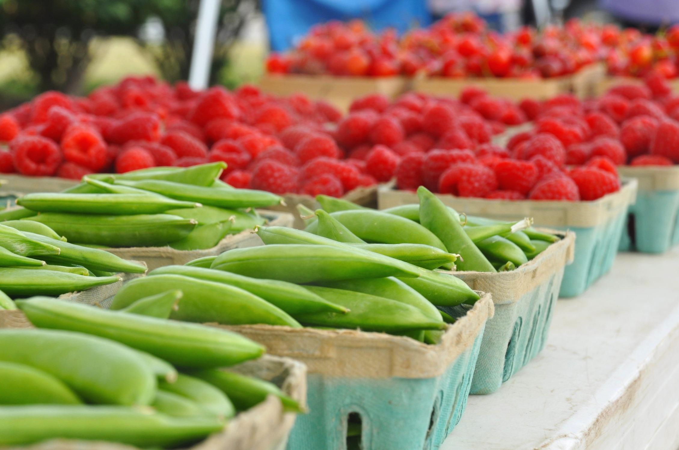 Webster Farmers Market -