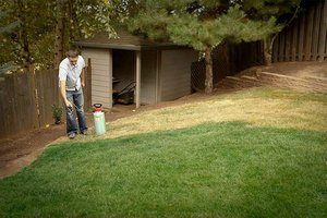 lawn-paint-spray-on-grass_b213608c35b893fd688992e5cf027010_3x2_jpg_300x200_q85.jpg