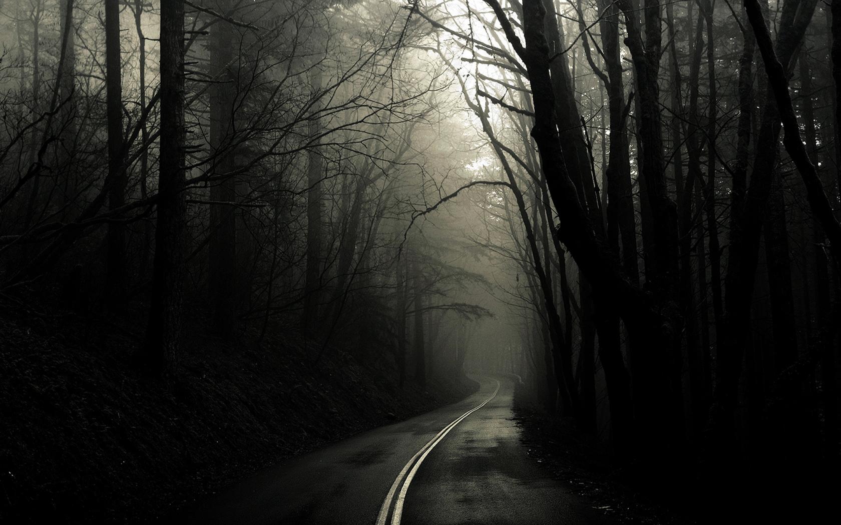 dark-into-light.jpg
