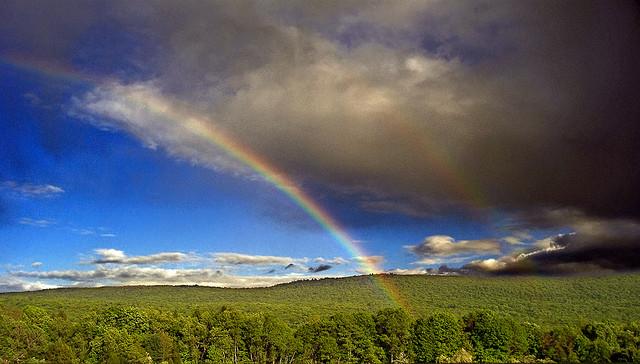 rainbow-.jpg