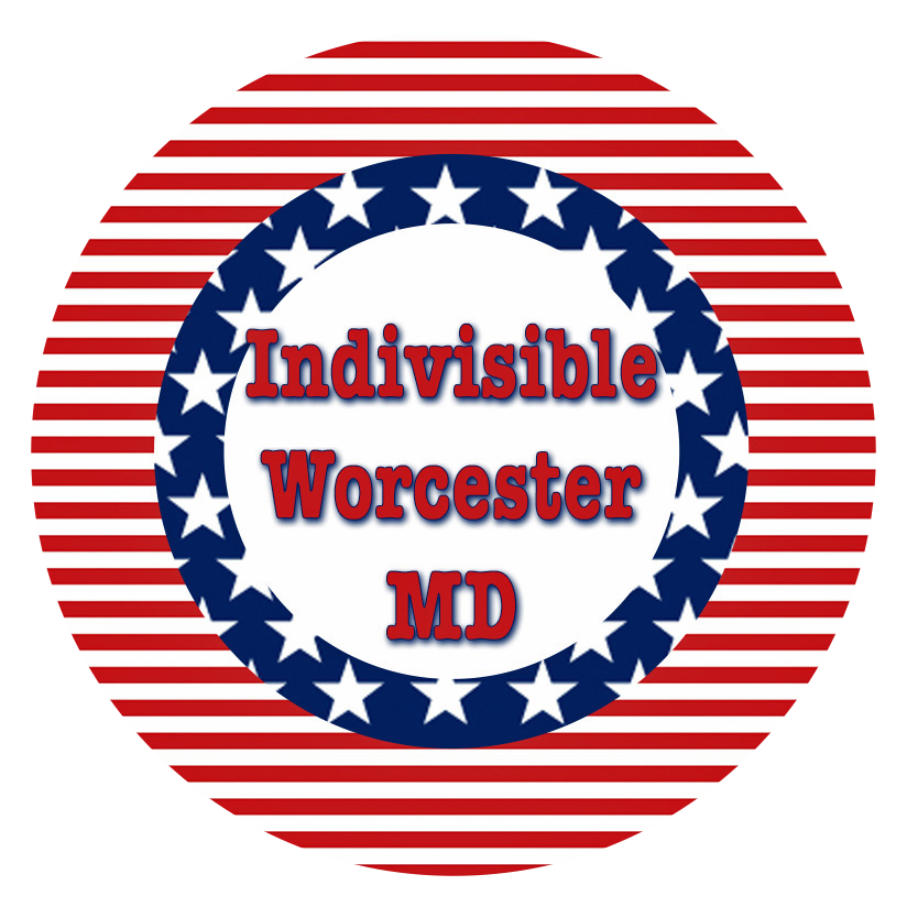 indivisible-button.png