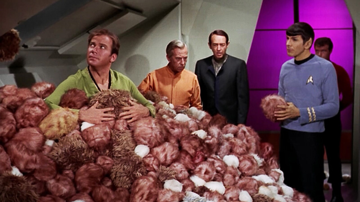 Study: How long would it really take for tribbles to fill Star Trek's  U.S.S. Enterprise? — Daily Star Trek News