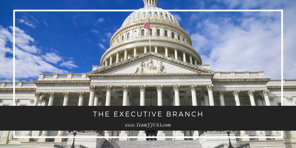 the executive branch.png