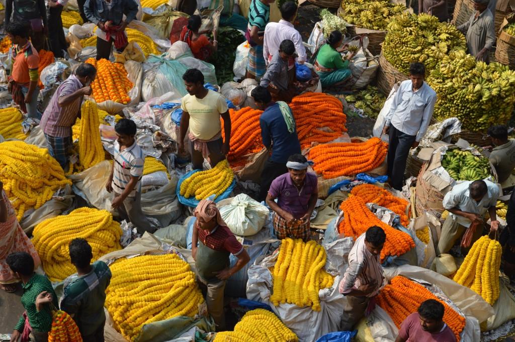Calcutta-flower-market-1024x681.jpg