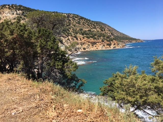 Cyprus-beach.jpg