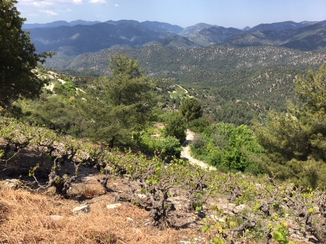 Troodos-mountains.jpg