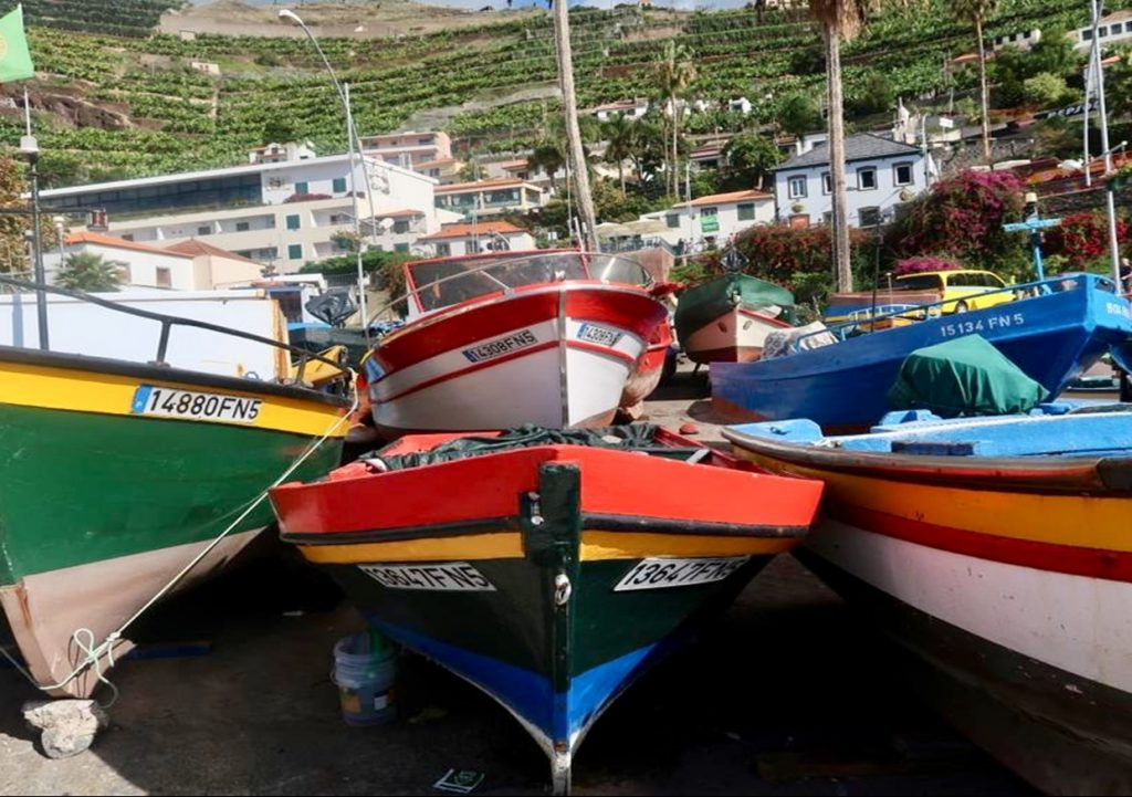 Fishing-boats-1024x721.jpg