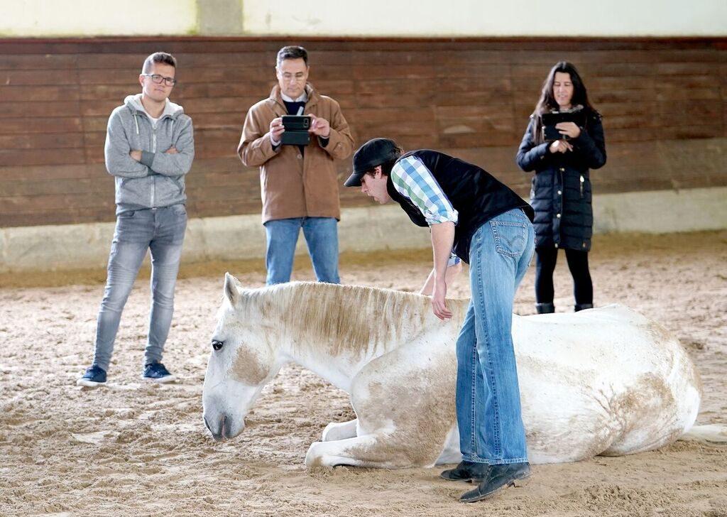 Horse-whisperer-1024x728.jpeg