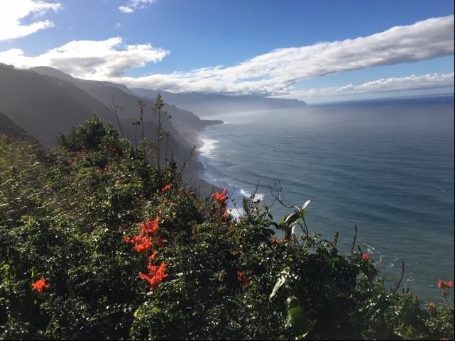 Madeira-view.jpg