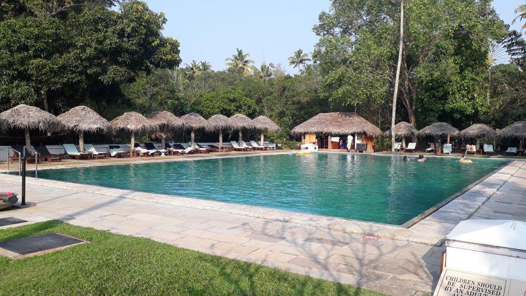 marari-pool2-1024x576.jpg