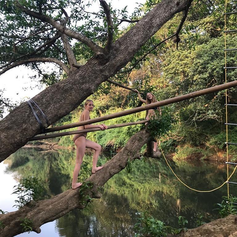 tree-at-river.jpg